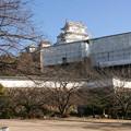 年末の姫路城(3)