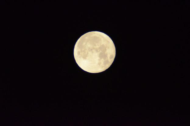 1月25日、未明の月