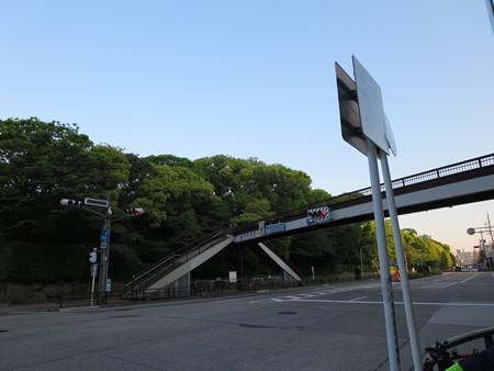 こんな駅前から。