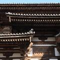Photos: 金堂