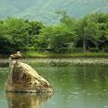 大沢池2012初夏_2