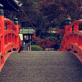 Photos: 法成橋より
