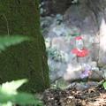 写真: 石仏の背後