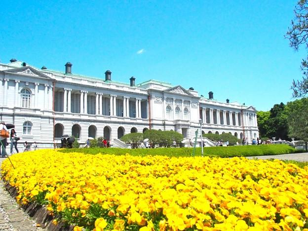 迎賓館赤坂離宮 (1)