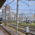 DSC_9526
