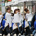 """写真: 早稲田大学 """"踊り侍""""_09 - 第10回 東京よさこい"""