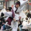 東京よさこい江戸の華 - 第10回 東京よさこい 2009