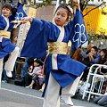 写真: 弥生桜_08 - 第10回 東京よさこい
