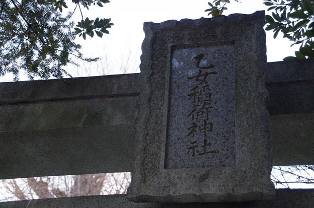 根津神社 (4)