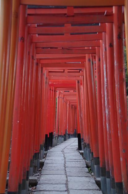根津神社 (5)