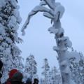 Photos: ノルウェー・サーリセルカ