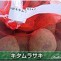 Photos: 03キタムラサキ