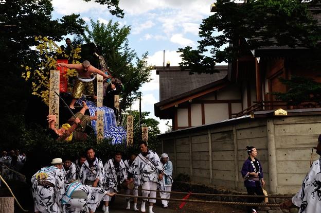 Photos: 土崎港曳山まつり 11