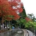 写真: 田沢湖畔 潟尻 たつこ像 01_02