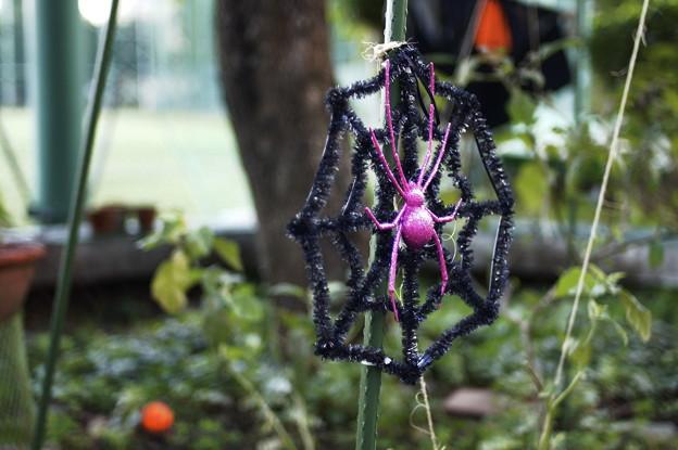 菜園のハロウィーン