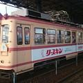Photos: 広島電鉄 3007