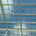 写真: 背景の青空で映える、オアシス21水の宇宙船の水 - 4