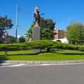 写真: 尾張旭駅前にある、横に長~い松の木 - 1