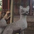 せともの祭 2014:深川神社 - 29