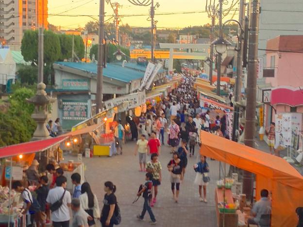 せともの祭 2014:深川神社 - 44