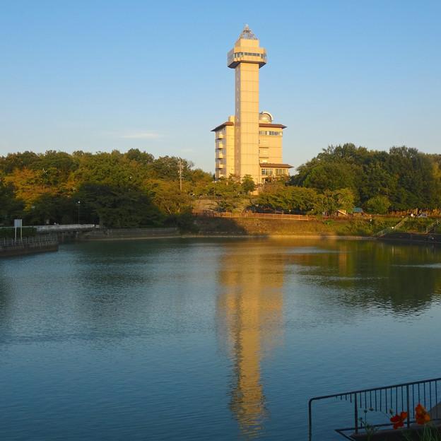 写真: 城山公園 No - 38:夕暮れ時の長池とスカイワードあさひ