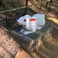 写真: 城山公園にある、奇妙な動物のオブジェ - 15