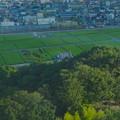 写真: スカイワードあさひ No - 056:展望室からの眺め(旭城と、あさぴーの田んぼアート)