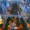 写真: 名古屋テレビ塔からの夜景 No - 04:久屋大通公園(北側)と桜通
