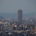 写真: 名古屋テレビ塔からの夜景 No - 06:ザ・シーン城北
