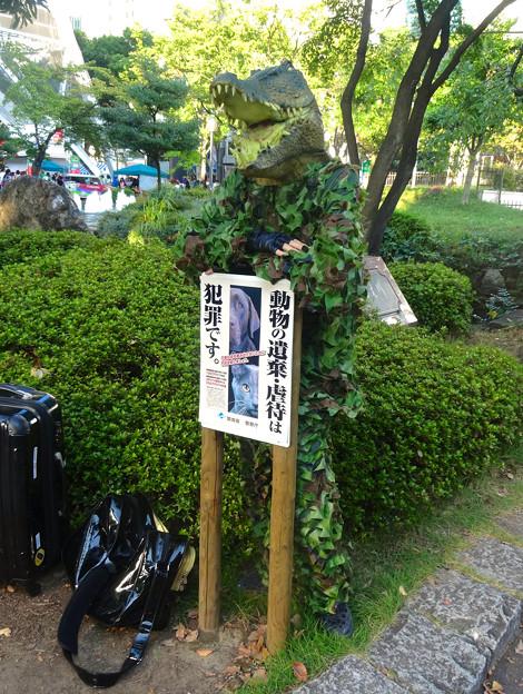 ニコニコ町会議 2014 No - 09:迷彩服を着て動物虐待に反対する(?)ワニ!ww