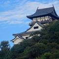 写真: 西から見上げた犬山城、今日も多くの人が展望階に - 1