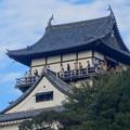 写真: 西から見上げた犬山城、今日も多くの人が展望階に - 2