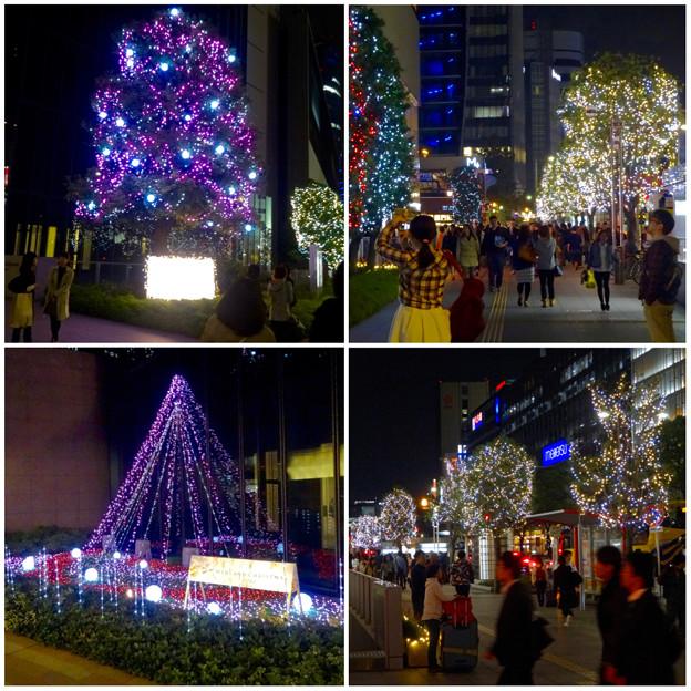 ミッドランドスクエア周辺のクリスマス・イルミネーション 2015 No - 17