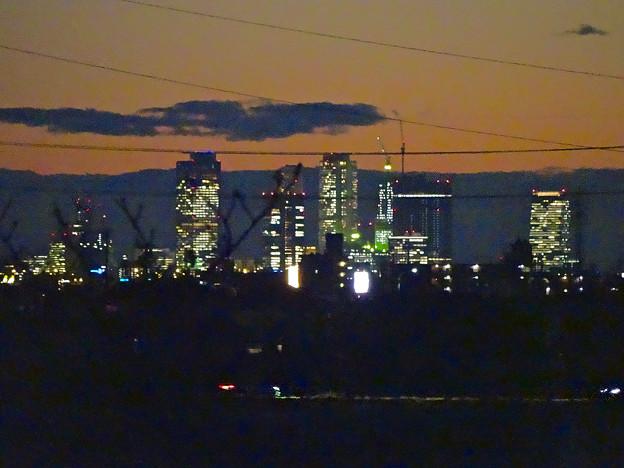 大池緑地公園から見た、夕暮れ時の名駅ビル群 - 6