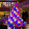 写真: アスナル金山のクリスマスイルミネーション 2015 No - 3