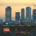 写真: エアポートウォーク名古屋から見た、夕暮れ時の名駅ビル群 - 2