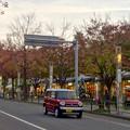 Photos: 街路樹が赤く染まってた、秋の星が丘テラス - 5