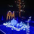 Photos: フラリエのクリスマスイルミネーション 2015「La Luce Blu」No - 9
