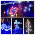 フラリエのクリスマスイルミネーション 2015「La Luce Blu」No - 42