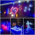 フラリエのクリスマスイルミネーション 2015「La Luce Blu」No - 48
