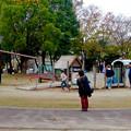 写真: 大高緑地公園 No - 6