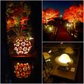 写真: 白鳥庭園 紅葉ライトアップ 2015:紅葉に彩りを添える、個性的な様々な美濃和紙あかりアートの作品 - 6