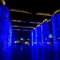 写真: 臨港緑園のクリスマスイルミネーション 2015:名古屋港「ルミポートファンタジー」No - 7