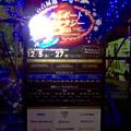 写真: 臨港緑園のクリスマスイルミネーション 2015:名古屋港「ルミポートファンタジー」No - 8