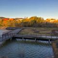 写真: 山下しずおが公約違反して勝手に土地の一部を売却しようとしてる、小牧市農業公園予定地 - 20:鷹ヶ池