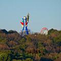 写真: イトーヨーカドー犬山店の駐車場から見た、モンキーパークの塔と観覧車 - 1