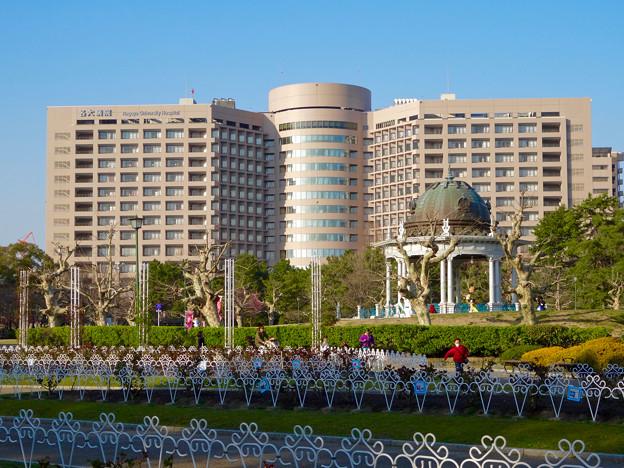 鶴舞公園:バラ園の方から見た、名大付属病院と奏楽堂 - 2
