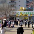 写真: 賑わう春の東山動植物園 正門入口 - 2