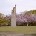 写真: 落合公園:ストーンヘンジ風のオブジェと桜 - 1