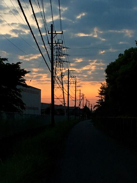 夕暮れ時、並ぶ電信柱 - 1